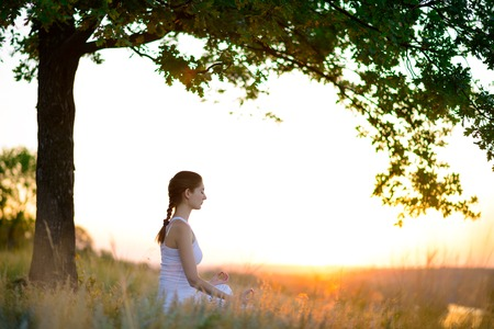 yoga meditation: Young Beautiful Woman Practices Yoga on the Sunny Meadow. Active Lifestyle