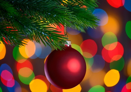 Christmas Ball on the Fir Branch on the Blurred Holiday Lights Background photo
