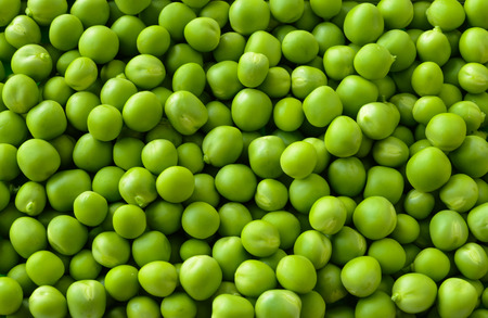 green pea: Background Full of Fresh Sweet Green Pea Ceeds. Healthy Eating Concept