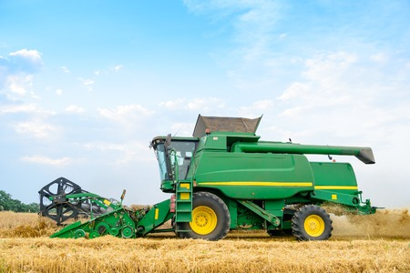 cosechadora: Cosechadoras de cosecha de trigo en el campo. Concepto de verano de la cosecha.