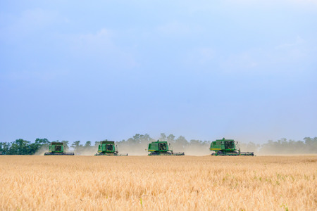 harvesters: ZAPORIZHZHYA, UKRAINE - July 28, 2015: Four John Deere Combine Harvesters Harvesting Wheat in the Field.