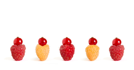 Row of Ripe Colorful Raspberries with Red Currants on the Top Isolated on the White Background. Cute Summer Berry Cakes.