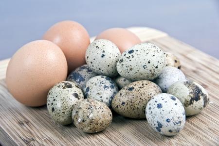 kuropatwa: Hen, kuropatwy i przepiórki jaj na drewno Zdjęcie Seryjne