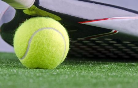 paddle racket potect ball