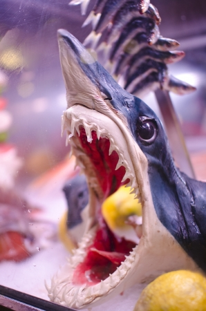 Head of fish shark on display  The pickled shark is a typical Mediterranean dish  In the background are sardines  photo