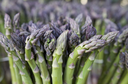 grocers: asparagus in a bunch with natural lightning