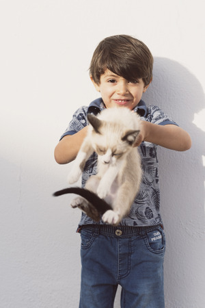little children and pet puppy cat in outdoors image images, boy and angry cat