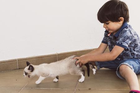 niños pequeños y mascota cachorro gato en imágenes de imagen al aire libre