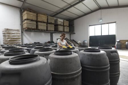 Wide angle image of worker woman looking olives fermentation in barrels