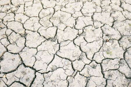 Dry lagoon due to lack of rain after drought, hot summer. No people