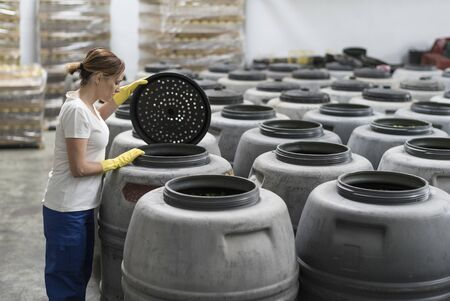 Woman looking olives fermentation in barrels in old factory
