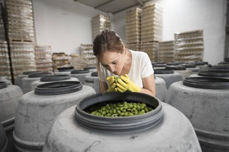 Worker woman smelling olives in factory warehouse, quality control of fresh products.