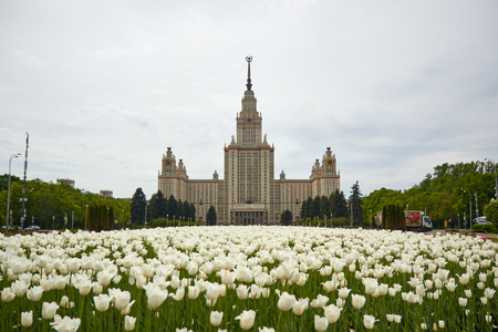 Main building of Moscow State University at the background and flower bed at foreground