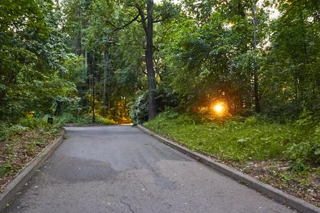 日没時に舗装された経路を持つシティパーク