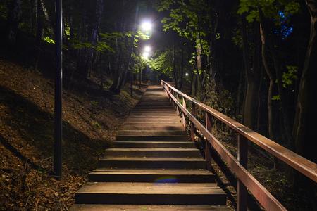 夜の森の中の木製の階段。ランタン付き照明 写真素材