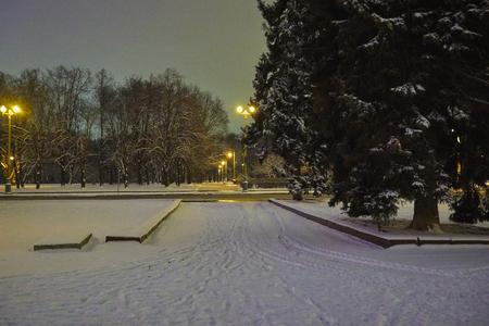 夜の冬のスパローの丘の上に公園