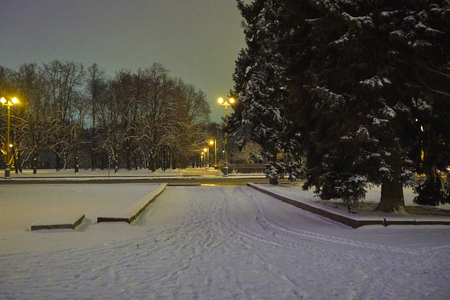 Park on Sparrow hills in winter at night