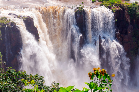 Iguassu Falls is the largest series of waterfalls on the planet, located in Brazil, Argentina, and Paraguay  photo