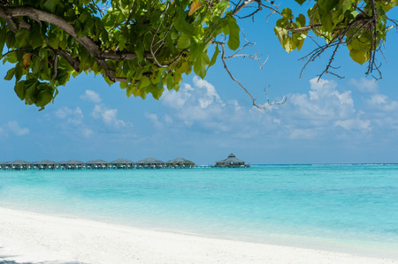 Over water bungalows in the ocean, view from beach with tree. Maldives photo
