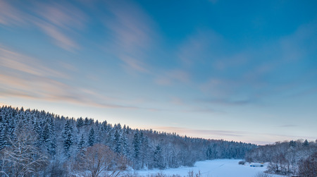 Fir tree forest and sunset sky at cold snow winter season
