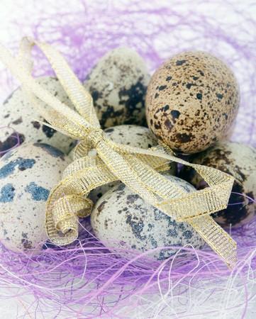 speckle: quail eggs