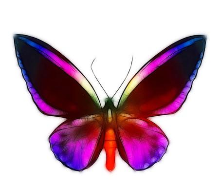 flier:  butterfly Stock Photo
