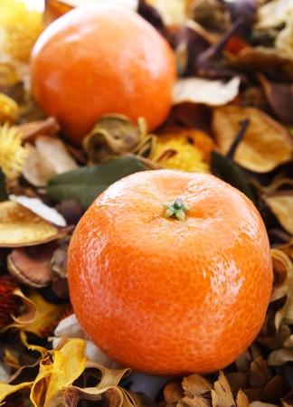 Oranges on aroma background photo
