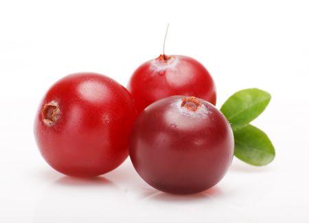 arandanos rojos: ar�ndanos Foto de archivo