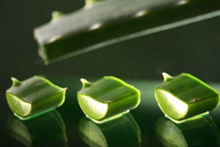 Aloe Stock Photo - 4730293
