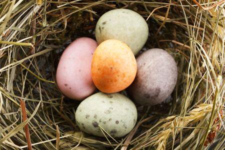 obesidad infantil: huevos de chocolate en el nido