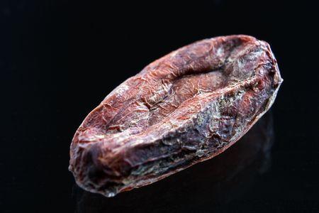 Cocoa beans closeup photo