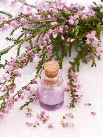 Lavender spa with essential oil photo