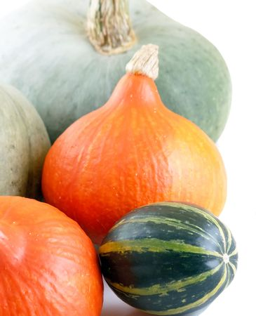 Collection of Pumpkins  photo