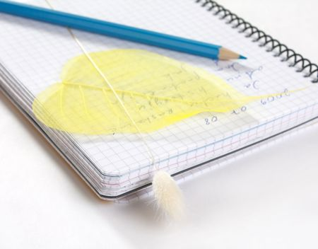 Add note to diary Stock Photo - 5967312