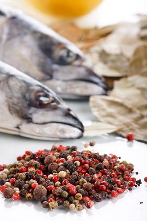 fishy: mackerel with spice
