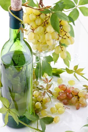 wine and young grape Stock Photo - 6491444