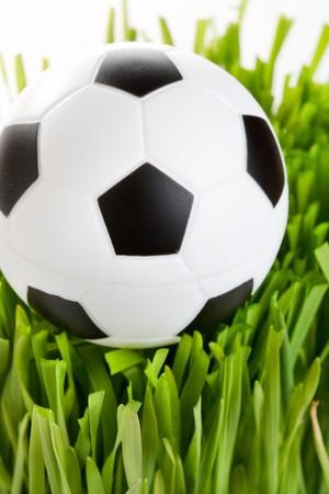 soccer wm: F�tbol en la hierba