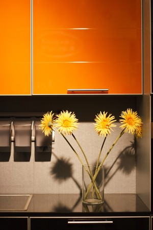 bright housekeeping: modern kitchen with flowers Stock Photo