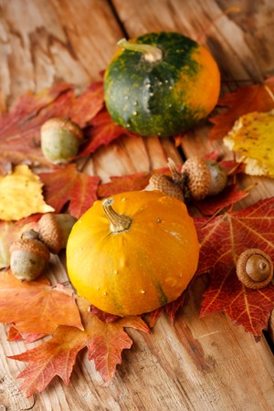 Harvested pumpkins with fall leaves  Stock Photo