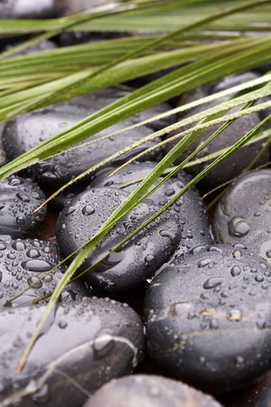 black stones and grass Stock Photo - 7888346