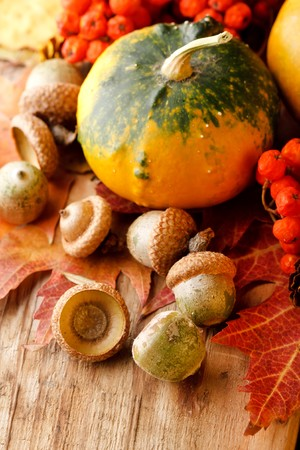 Harvested pumpkins with fall leaves Stock Photo - 7888331