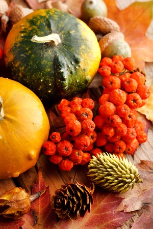 Harvested pumpkins with fall leaves  Stock Photo - 7888320