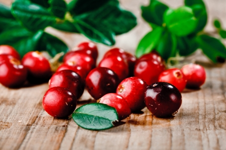 canneberges: Canneberges rouges fra�ches