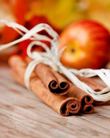 pie de manzana: canela y manzanas  Foto de archivo