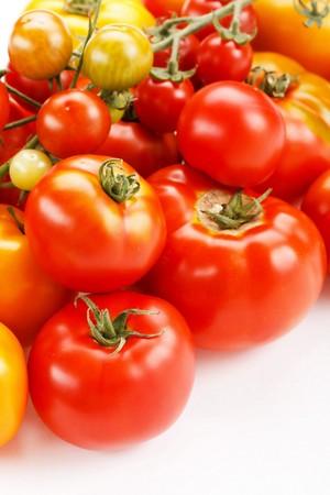 tomato plant: fresh tomatoes