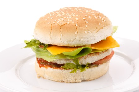 cheeseburger on the plate photo