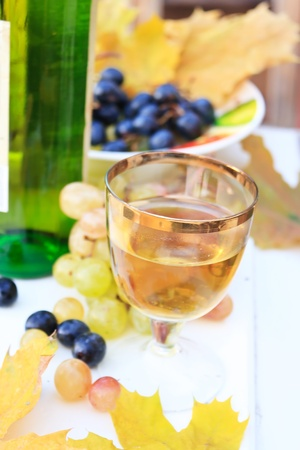 Grapes and wine  photo