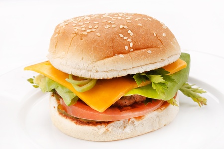 cheeseburger on the plate  Stock Photo - 8757630