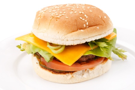 cheeseburger on the plate Stock Photo - 8882781