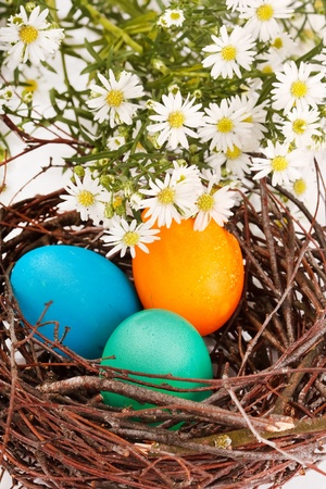 Easter eggs in a nest Stock Photo - 9063604